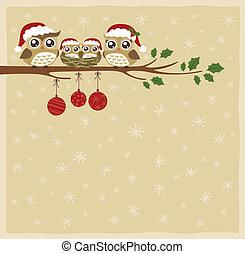kerstmis, familie viering, uil