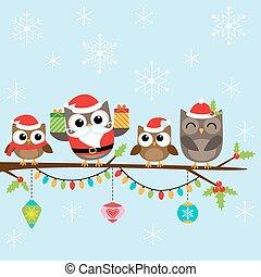 kerstmis, gezin, van, uilen