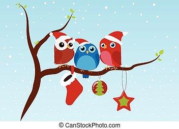 kerstmis, groet, met, vogels, zittende , op, tak