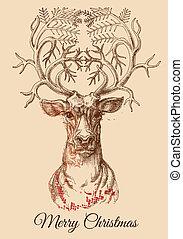 kerstmis, hertje, schets, vector, illustratie