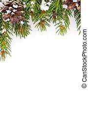kerstmis, kader, met, sneeuw, en, kegel