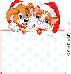 kerstmis, kat, en, dog, meldingsbord