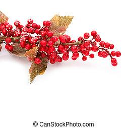 kerstmis, seizoenen, grens