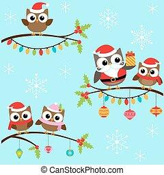 kerstmis, uilen, op, takken