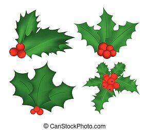 kerstmis, winter, bladeren, vrijstaand, illustratie, symbool...