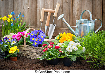 kertész, palántázás, menstruáció