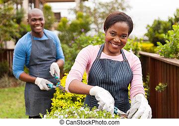 kert, dolgozó, párosít, fiatal, együtt, fekete, otthon
