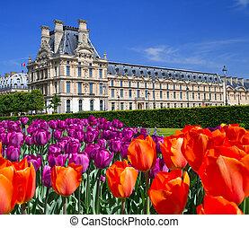 kert, franciaország, párizs, palota, luxemburg