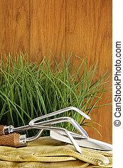 kert szerszám, noha, fű, képben látható, erdő, háttér