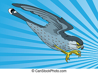 Graphic representation of a Kestrel swopping to kill it's prey in a fast dive.
