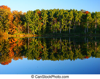 Beautiful fall colors reflect off a pond at Kettle Moraine State Forest in Wisconsin.