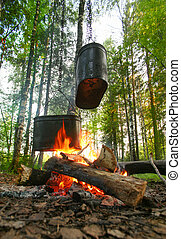 kettles on fire in wood