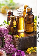 keukenkruiden, medisch, bloemen, wezenlijke olies
