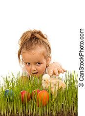 kevés, fertőző, húsvét, csirke, leány