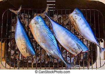 kevés,  fish,  bonito,  tunny, Grillsütő, tonhal,  sarda