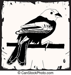 kevés, madár, ábra