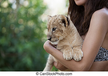 kevés, neki, oroszlán cub, hatalom kezezés, leány