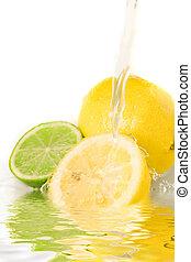 kevert, citrom- és narancsfélék