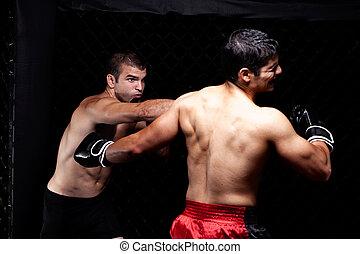 kevert, martial művész, küzdelem, -, átlyukasztás