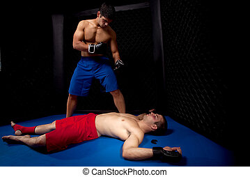 kevert, martial művész, küzdelem
