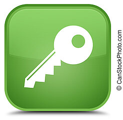 Key icon special soft green square button