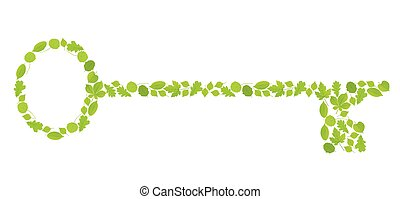 Key made with leaves vector background ecology concept