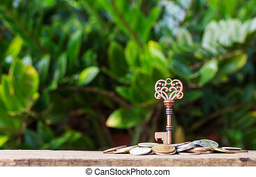 Key on pile of money and nature background.