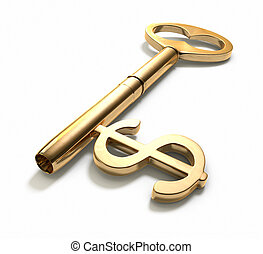 A key with a dollar-sign implemented on White. Includes Clipping Path