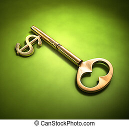 A key with a dollar-sign implemented on a green surface.