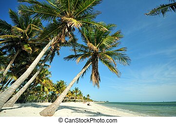 Key West Florida. Main Beach, South Beach. USA
