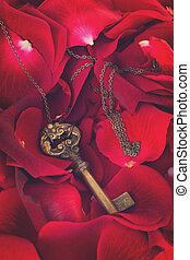 Key with red rose petals