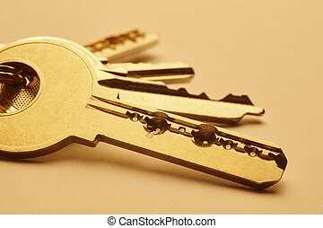 Keyring with keys in golden tone over an empty background