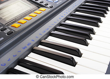 Keys of a musical instrument. Synthesizer.