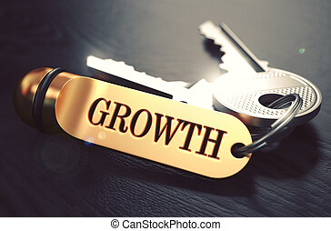 Keys to Growth. Concept on Golden Keychain.