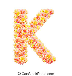 K,flower alphabet isolated on white