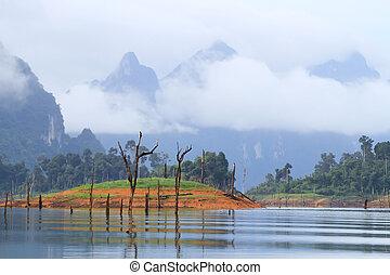 khao-sok, a, népszerű, nemzeti park, közül, thaiföld