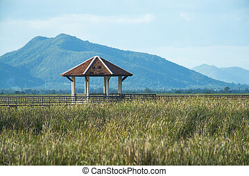 khiri, bridzs, légvédelmi rakéta, roi, fából való, kán, nemzeti, yod, tó, liget, prachuap, thaiföld