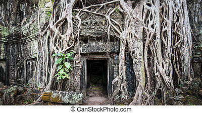 khmer , αρχαίος , βουδιστής , χώρος κολλέγιου , cambodia., ...