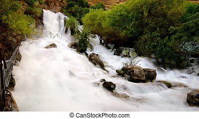 Khurmal Forrest in mountains of autonomous Kurdistan region...