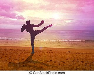 Kick Boxer - Silhouette illustration of a kick boxer...
