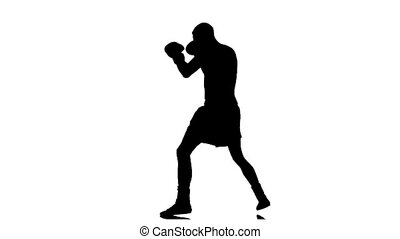 Kickboxer. Training series of punches and kicks