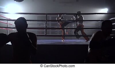 Kickboxers preparing for competitions . Slow motion -...