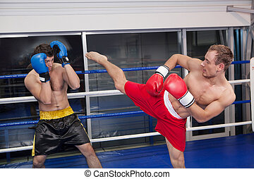 Kickboxing. Two young men kickboxing on the ring