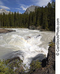 Kicking Horse River - Yoho National Park - Canada