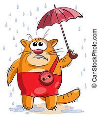 kicsi, alatt, esernyő, háj macska