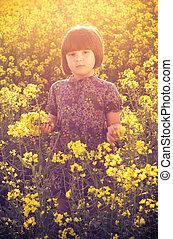 kicsi lány, elrabol, mező, csokor, kéz