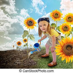 kicsi lány, napraforgó, kertész, természet