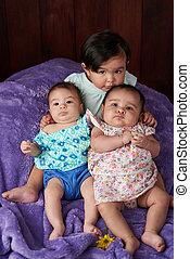 kicsi, portré, csoport, kisbabák