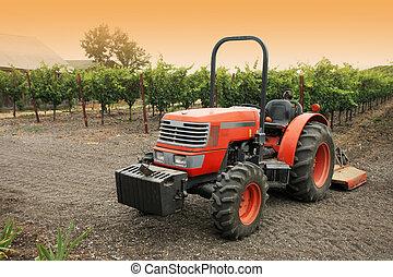kicsi, szőlőskert, piros vontató