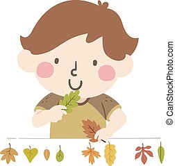 Kid Boy Check Different Leaves Illustration